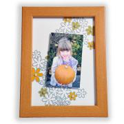 Drifting Daisy Picture Frame