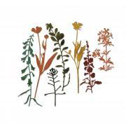 Sizzix Thinlits Die Set 7PK - Wildflowers #2