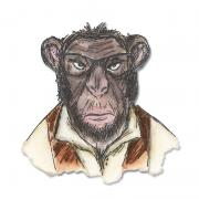Sizzix Framelits Die Set 4PK - Hipster Chimp