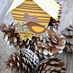 Bird house - decoration with pine cones.