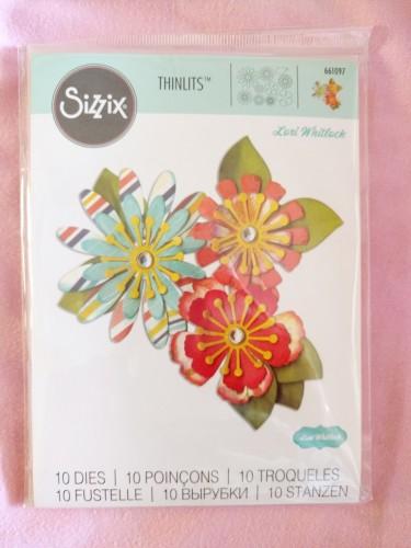 sizzix thinlits mix and match