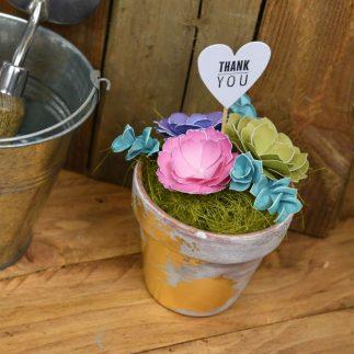 DIY Succulent Wedding Planter Vlog!