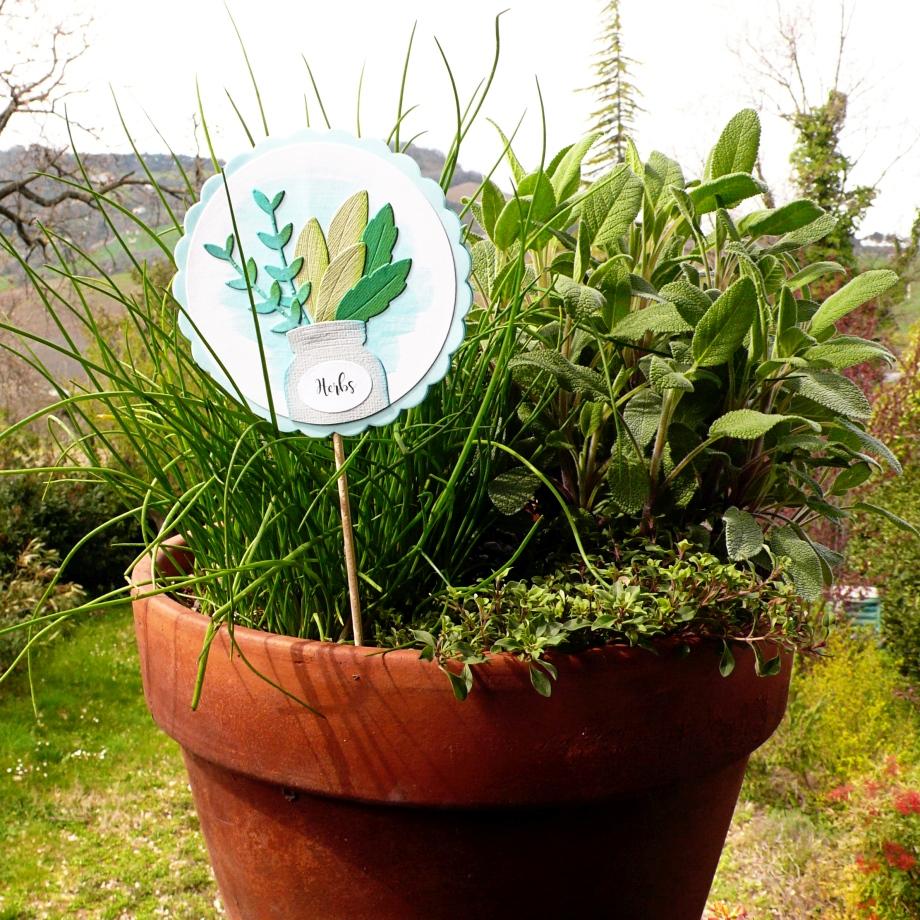 DIY Garden Gift Idea: Herbs Marker | Anna Draicchio | Daily ...