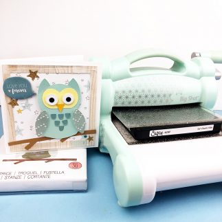 A Hoot of a Birthday! - Card + Video