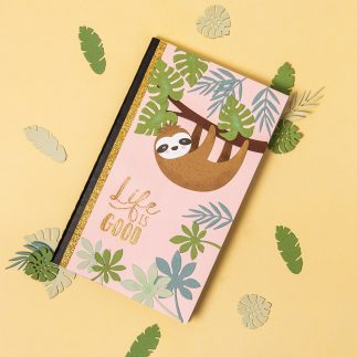 Sloth Notebook tutorial
