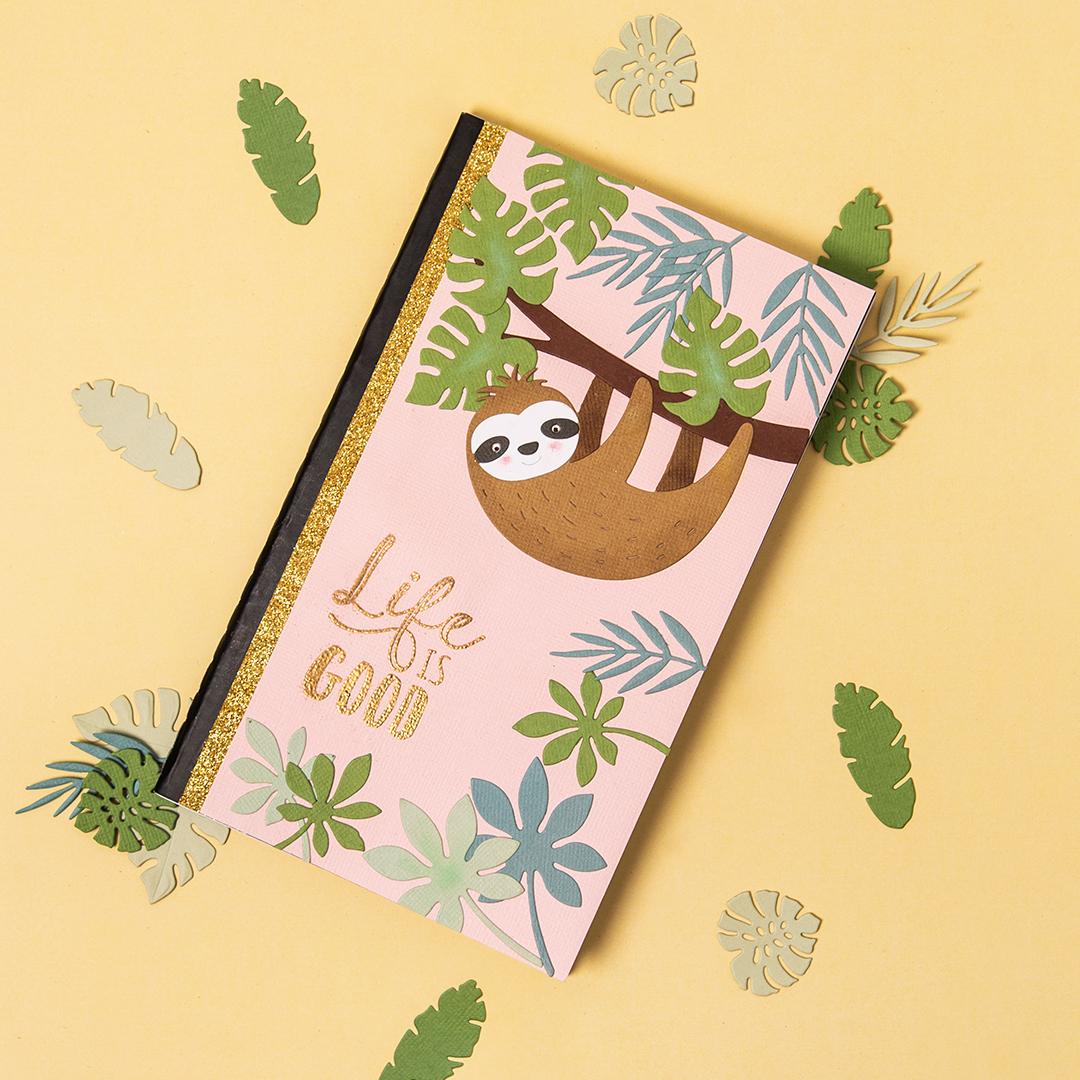 Sloth Notebook tutorial